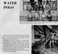 water-polo-1_0